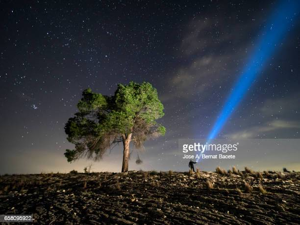 Man on the top of a mountain close to a great tree illuminating the sky with stars during the night  with a lantern