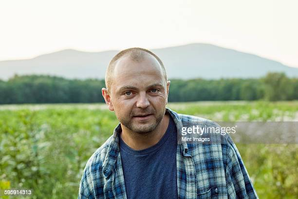 a man outdoors in a wild flower meadow wearing a checked shirt. - homme chauve photos et images de collection