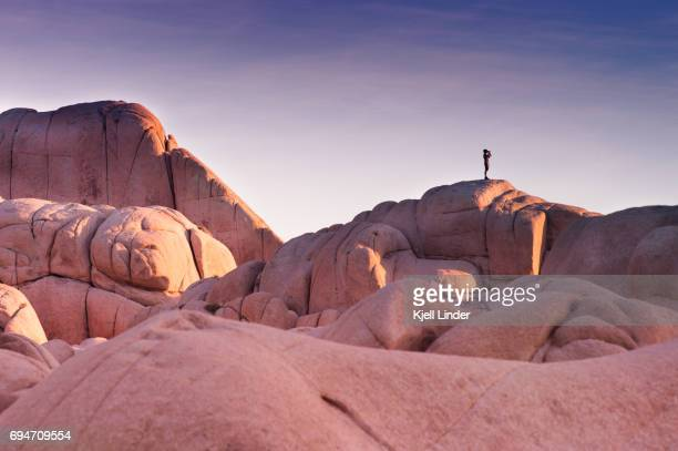 man overlooks joshua tree boulders during sunset - joshua tree stock photos and pictures