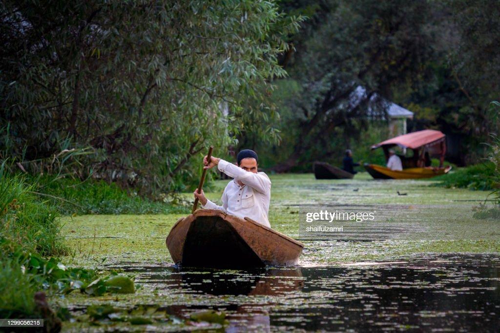 Man paddling a shikara a traditional boat on Lake Dal, Srinagar, Jammu and Kashmir, India. : Stock Photo