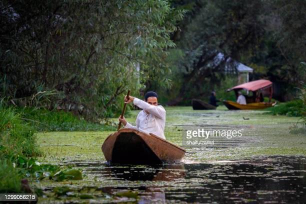 man paddling a shikara a traditional boat on lake dal, srinagar, jammu and kashmir, india. - shaifulzamri stock pictures, royalty-free photos & images