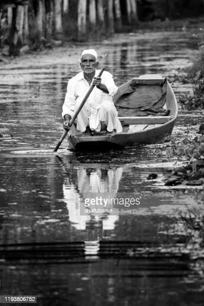 a man paddling a shikara - a traditional wooden boat. - shaifulzamri stock pictures, royalty-free photos & images