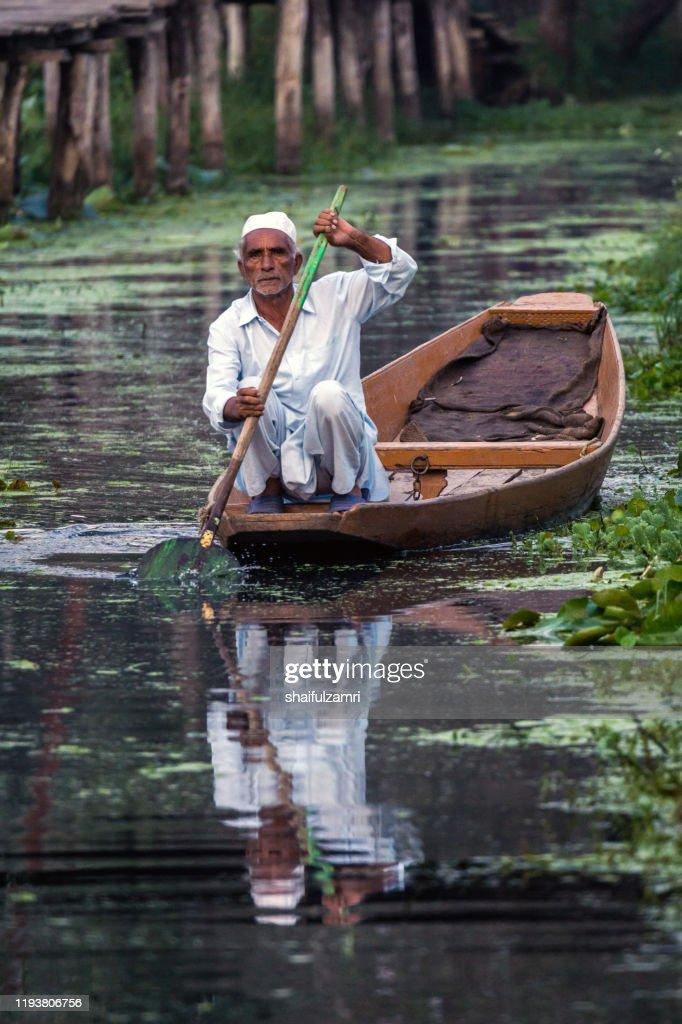 A man paddling a shikara - a traditional wooden boat. : Stock Photo