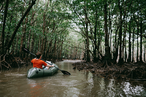Man paddling inflatable raft in mangrove jungle, Okinawa, Japan - gettyimageskorea