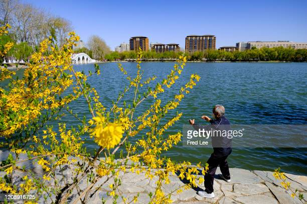 A man performs Tai Chi while wearing a mask as part of precautionary measures against the spread of the COVID19 on April 02 2020 in Beijing China...