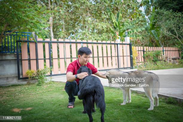 Man Petting Dogs While Crouching At Park