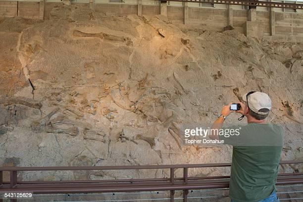 A man photographs dinosaur fossils