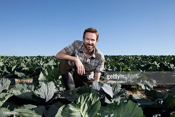 Man picking lettuce in field