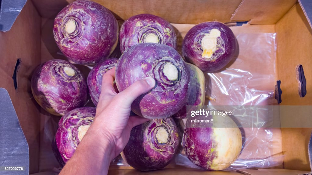 Man picking up good turnips in shop for vegetarian meal. : Stock Photo