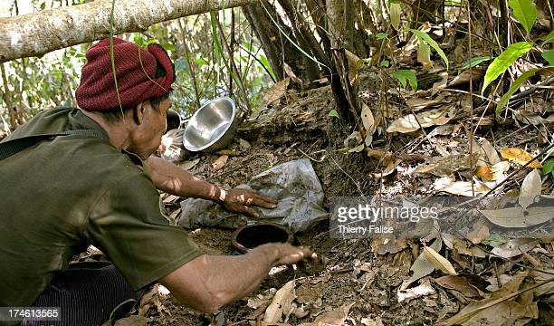 A man picks up fermented fish paste a favourite Karen condiment in a secret cache near a displaced people community in the jungle of the Northern...