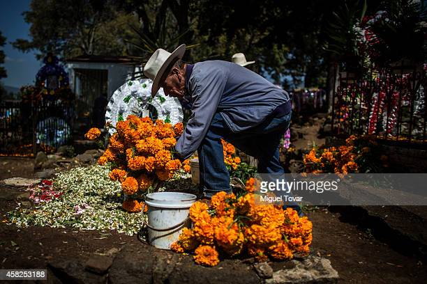 A man places cempasuchil flowers on a cemetery grave at the outskirt of Patzcuaro which people remember those relatives and friends that have passed...