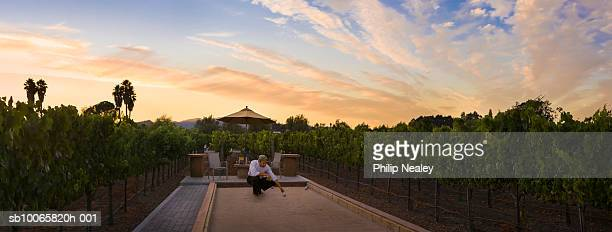 Man playing Bocce ball in vineyard