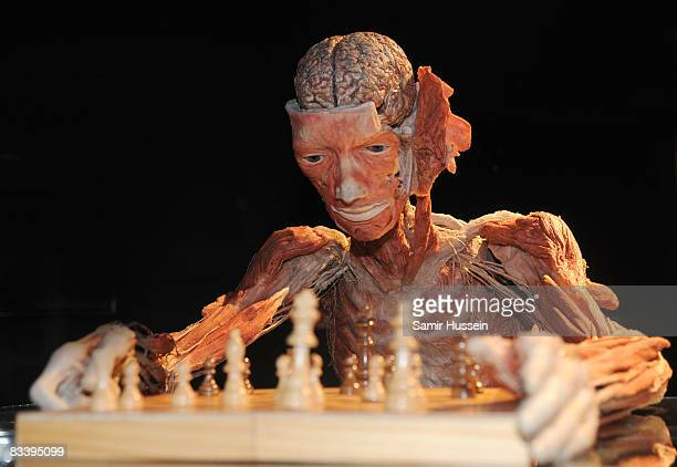 A man playing chess is displayed at Gunther von Hagens' 'Body Worlds And The Mirror Of Time' exhibition at the O2 bubble on October 23 2008 in London...