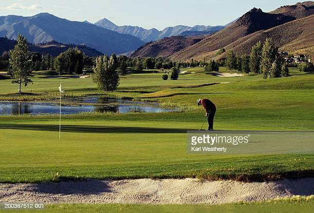 man playing golf, big wood golf course, sun valley, idaho, usa - sun valley idaho stock photos and pictures