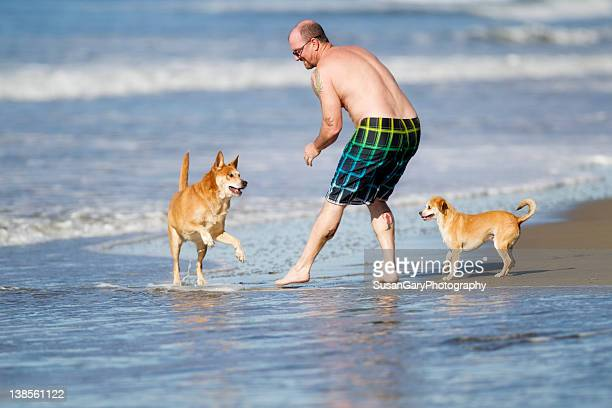 Man playing on beach with two dogs
