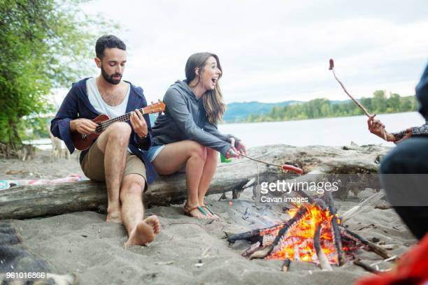 man playing ukulele while sitting with friends roasting sausages at campfire - snag tree stock pictures, royalty-free photos & images