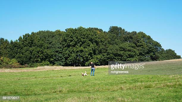 Man playing with a dog in Hanpstead Heath
