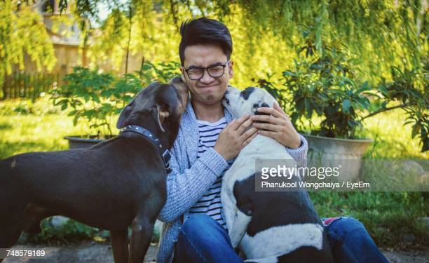 Man Playing With Dogs By Plants