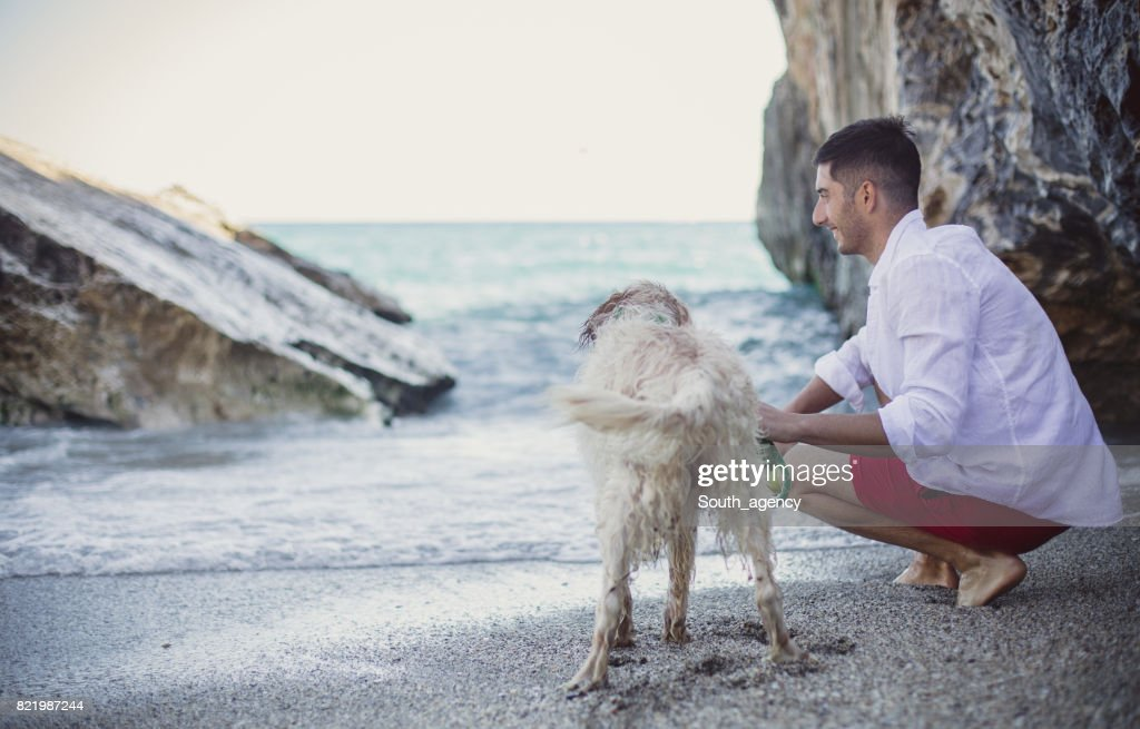 Man playing with his best friend on the beach : Stock Photo
