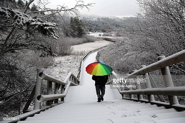 A man pose as they walk with his colorful umbrella at snow covered Abant Nature Park on November 29 2013 in Bolu Turkey