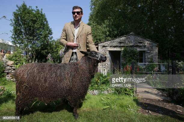 A man poses with a black Wensleydale sheep at the Welcome to Yorkshire Garden during a visit the 2018 Chelsea Flower Show in London on May 21 2018...