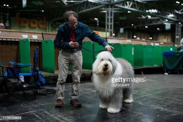 A man poses with his old English sheepdog before judging on the second day of the Crufts dog show at the National Exhibition Centre in Birmingham...