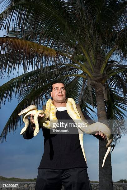 man posing with snakes outdoors in miami - burmese python stock pictures, royalty-free photos & images