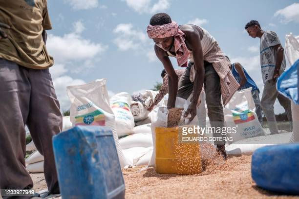 Man pours wheat into a container during a food distribution organized by the Amhara government near the village of Baker, 50 kms South East of...