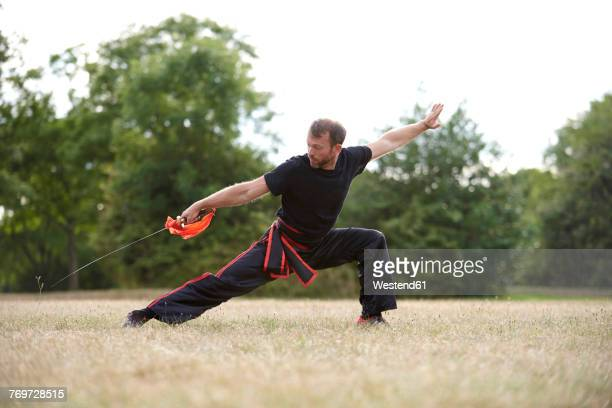 man practicing kung fu in park - kung fu stock photos and pictures