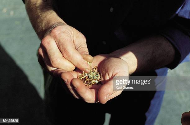 Man preparing a joint A drug consumer mixes in his hands hashish and tobacco to manufacture a joint