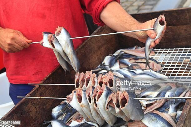 man preparing herrings - hecht stock-fotos und bilder