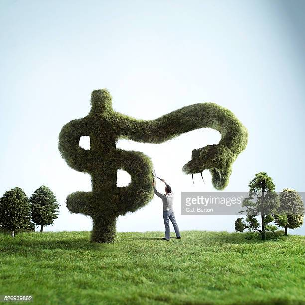 Man pruning snake-shaped dollar sign hedge