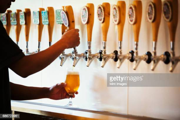 Man pulling a glass of beer from a tasting bar in a brewery.