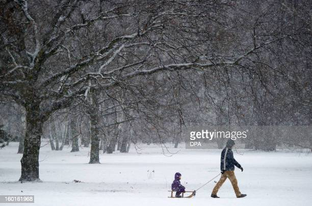 A man pulls a child on a sledge through the snowy Tiergarten park in Berlin on January 27 2013 AFP PHOTO / MARC TIRL GERMANY OUT
