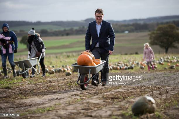 A man push a wheelbarrow full of pumpkins insided during the pumpkin festival Pumpkin market is one of the exiting things locals can experience every...