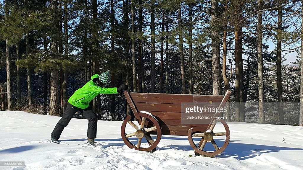 https://media.gettyimages.com/photos/man-pushing-cart-on-snow-covered-field-picture-id568535289