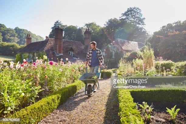 Man pushing wheelbarrow in sunny garden