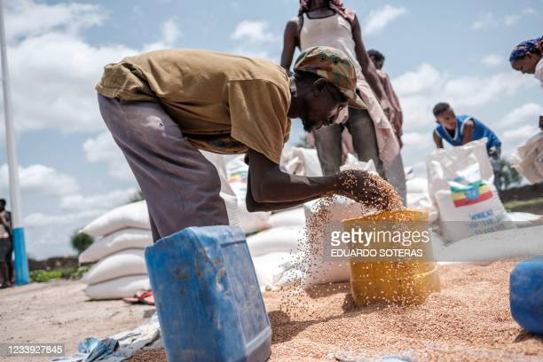 Man puts wheat into a container during a food distribution organized by the Amhara government near the village of Baker, 50 kms South East of Humera,...