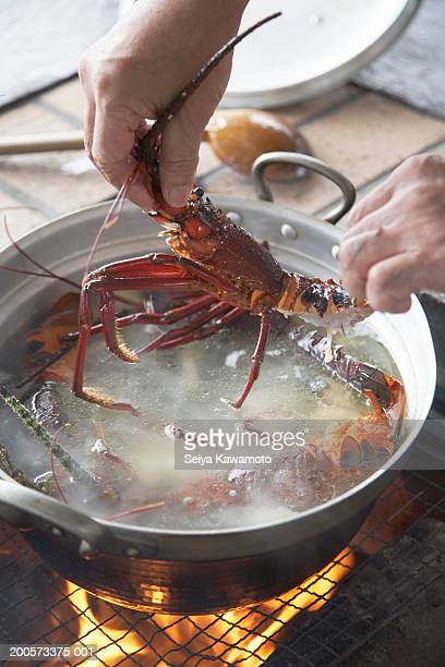 Man putting lobster in boiling water