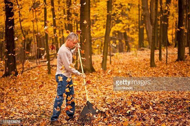 man raking leaves - rake stock pictures, royalty-free photos & images