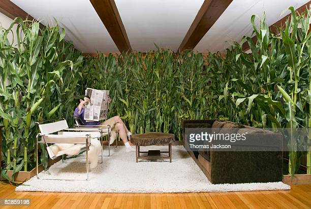 Man reading paper in room with corn