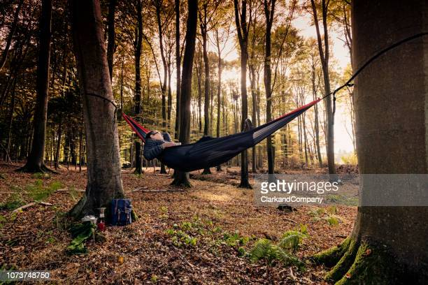 man relaxing in a hammock in the woods - hammock stock pictures, royalty-free photos & images