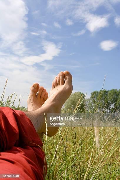 Man Relaxing in a Meadow