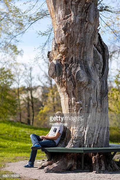 Man relaxing on bench under tree