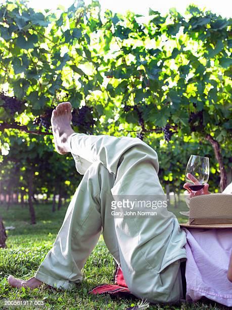 Man relaxing on picnic blanket in vineyard