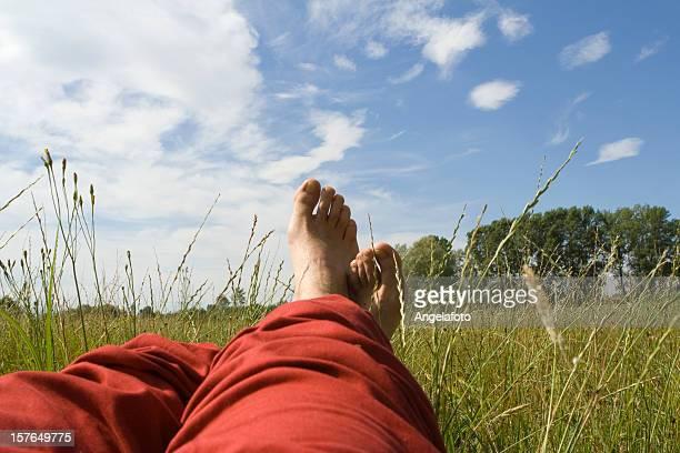 Mann Entspannen auf der Wiese