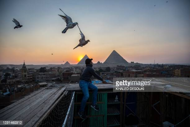 Man releases pigeons backdropped by the Giza pyramids in the Egyptian capital's twin city of Giza on February 21, 2021.