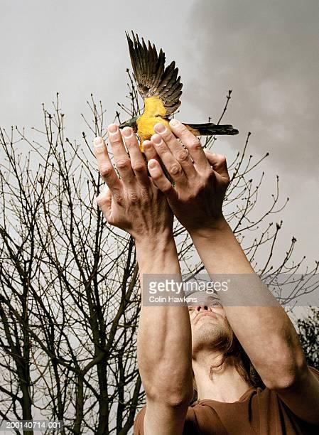 man releasing bird from cupped hands, outdoors - laisser partir photos et images de collection