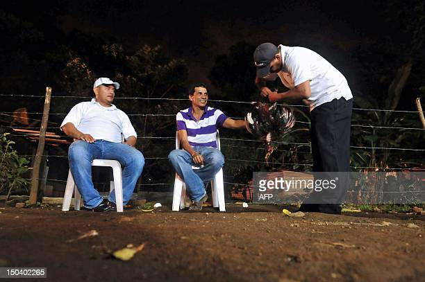 A man removes a penknife from his rooster's spur after a cockfight in Managua on August 12 2012 Bloody cockfighting with spurs a tradition inherited...