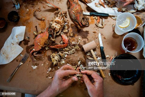 A man removes crab meat from its shell at Cantler's Riverside Inn June 28 2017 in Annapolis Maryland A unique multimillion dollar industry crab...